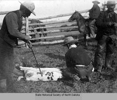 1885: Cowboys branding calf with de Mores cattle brand, Medora, Dakota Territory