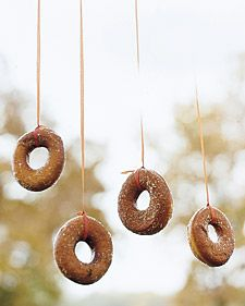 Doughnuts on a String