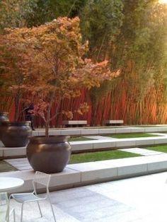 Bamboo garden, downtown San Francisco