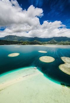 Oahu, Kaneohe:  You will need a boat to get out to this Kaneohe Sandbar, it is so worth with because the Sandbar is an island of white sand.