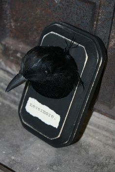 """The dollar store has black crows for Halloween every year. Get a small wooden plaque and paint it black. Decapitate (sounds so gross) your crow/raven and glue him (or her) to the plaque. Print 'nevermore' onto paper to make a """"name- plate."""""""