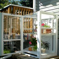 cabinets, mini greenhous, old windows, greenhouses, fun recip, recycled windows, green hous, storm window, backyards
