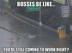 Bosses be like....