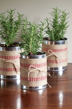 A holiday centerpiece perfect for Christmas—wrap upcycled soup cans in upholstery tape, and secure with twine. Place small rosemary plants in cans. Guests can take these home and use in cooking or to plant in their gardens.
