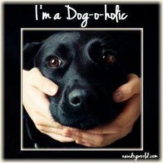 Dog-a-holic--Yes I am!