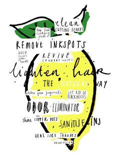 lemon illustration, lemons, nina cosford, lemon graphic