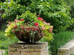 spring garden containers - Bing Images