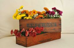 Two wooden cheese boxes by SweetPeasForSale on Etsy