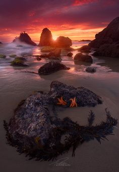 El Matador State Beach at low tide in Malibu, Ca.  Landscape photography by Ted Gore.