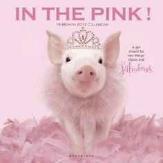 Princess Pink Pig
