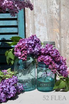 Lilacs in aqua mason jars