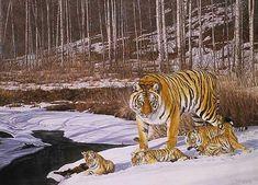 Simon Combes - Siberian Winter (http://www.hiddenridgegallery.com/store/simon-combes/siberian-winter.html) #art #simoncombes