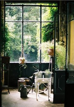 Serene greenhouse