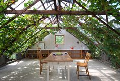 interior design, architects, japan, dream, vines, greenhouses, rooftop, patios, garden