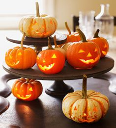 Turn a plain pumpkin into a masterpiece with these easy-to-create critters and creative carving designs. DIY Craft to carve your own Halloween pumpkins