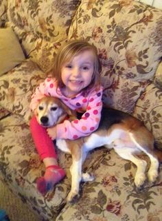 Meet the Chicago 4! - ARME's Beagle Freedom Project