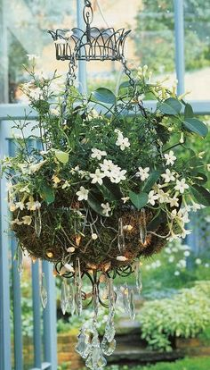 prisims on a hanging planter...love...