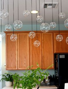 Hanging glass globe display