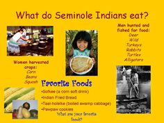What do Seminole Indians eat?