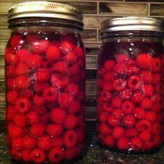 Raspberry Infused Vodka recipe from Hobby Farm Magazine. Ummm OK!