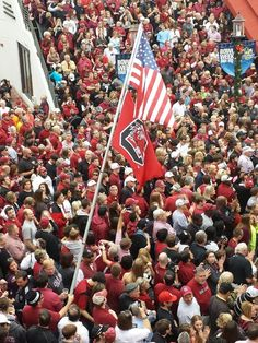 love those gamecocks USC USC