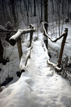 SNOWY CROSSING❤️
