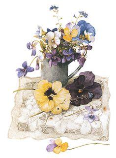 marjolien bastin, natur sketch, bastin art, spring violet, violets, marjolein bastin, pansies, artist, flower