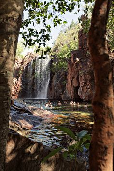 litchfield national park, northern territory by line x shape x colour
