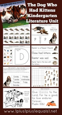 Kindergarten Literature Unit Study Printables to go along with the book,  The Dog Who Had Kittens   --  FREE from @1plus1plus1 #Kindergarten