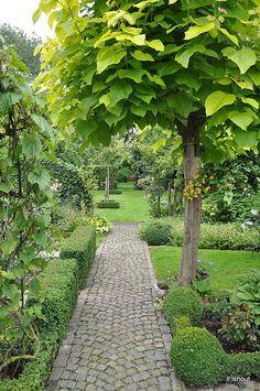 love the cobblestone path