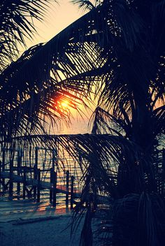 Let taxiwagon.com take you there: North Captiva Island