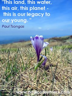 Paul Tsongas Quote o