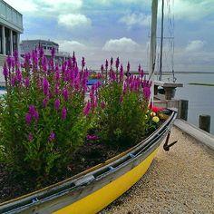 Boat planter - http://iheartlbi.com/boat-planter/