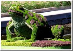 sculptures, sculpture garden, animals, animal pictures, art, front yards, gardens, topiaries, frogs