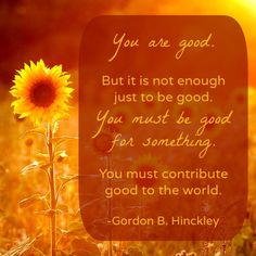 """""""You are good. But it is not enough just to be good. You must be good for something. You must contribute good to the world."""" -Gordon B. Hinckley http://www.meetmormonmissionaries.org/2084/young-women-gathering-before-they-serve-their-missions"""