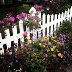 White picket fence, just like at our old house @Becky Hui Chan Miller <3