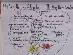 Compare contrast Very Hungry Caterpillar The Very Busy Spider