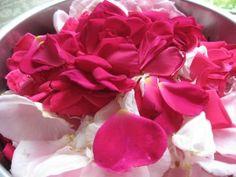 Rose Petal Beads