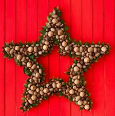 Nut and star wreath. How-to: http://www.midwestliving.com/homes/seasonal-decorating/beautiful-holiday-wreaths/page/9/0