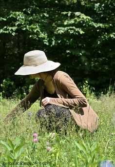 Herbalism courses online, your online doorway into the wild and wonderful world of plant medicine.