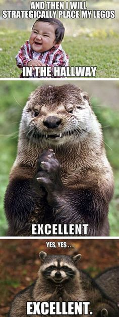 the otter...
