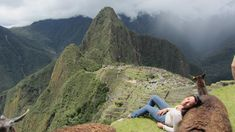 Against a llama in Machu Picchu. | 30 Places You'd Rather Be Sitting Right Now