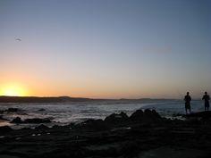 fraserislandfish homeoffish, island fish, eurongbeach fraserislandbarg, fraser island