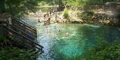 Madison Blue Springs State Park: Florida's hidden oasis #travel #roadtrips #roadtrippers.