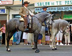 Fuengirola's Feria   Spain