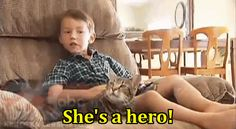 The boy saved from a dog attack thanks his cat :)