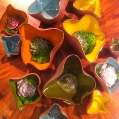 Global Views is a platinum level supporter of Dwell with Dignity, donating beautiful pieces for our apartment installations.  Their new anemone bowls are fabulous!