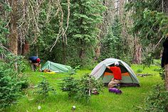 camp outdoor, backyard campout, american backyard, campout invit, invit famili
