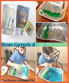 Humboldt Who? Hands On to Understand Ocean Currents & Their Affect On The Galapagos Islands    #galapagos  #southamerica  #homeschool  #ihsnet