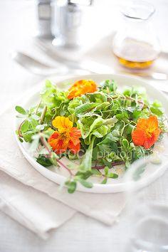"beautiful ""summer greens"" salad"